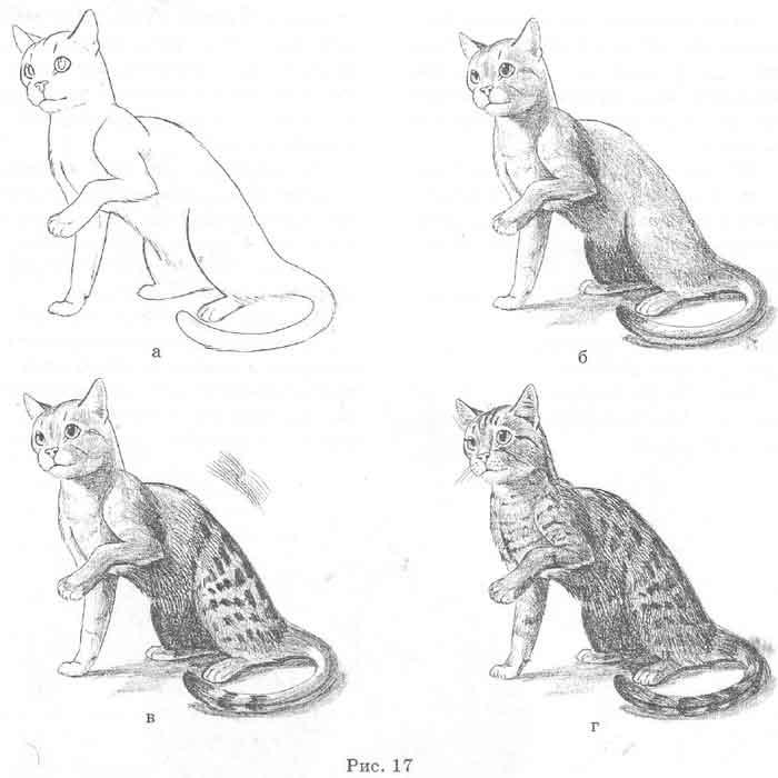 Нарисуй силуэт кошки.